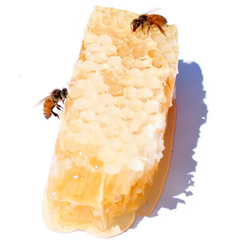 The Best Bees Company honeycomb