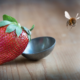 Bees and the Food Supply: A Symbiotic Relationship