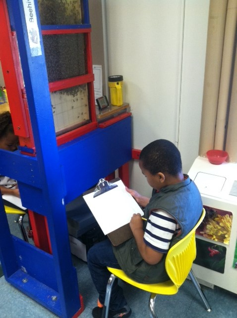 Image of student with a clipboard doing schoolwork