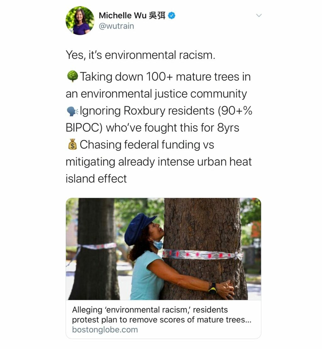 Michelle Wu, Mayoral Candidate in Boston MA, Tweeting about #SaveMelneasTrees