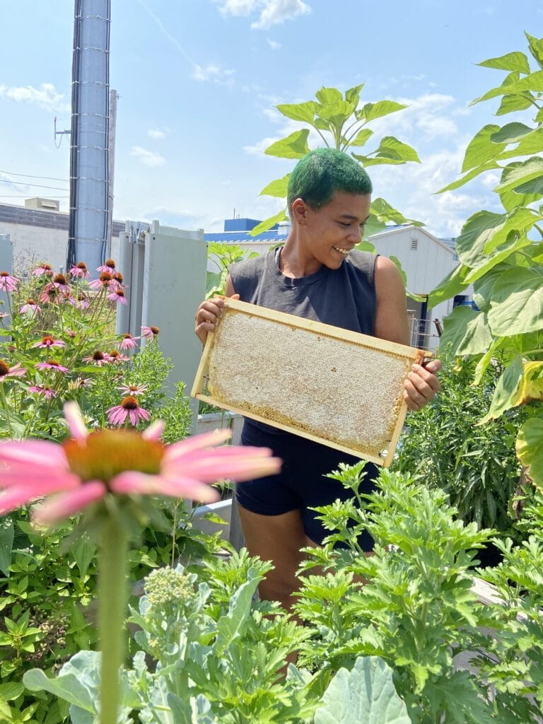 Lead Harvester, Che holds a beehive in a lush garden.