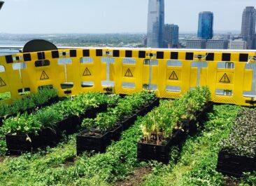 Rooftop gardens for sustainable living.